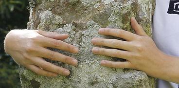 mains massage.JPG
