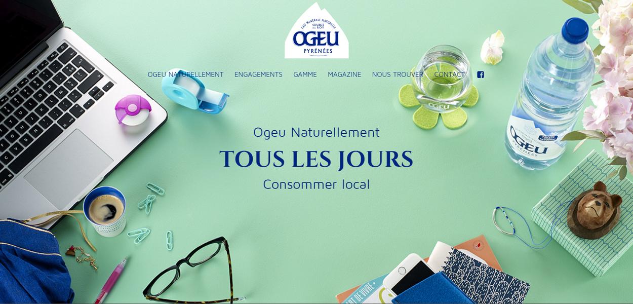 Web OGEU
