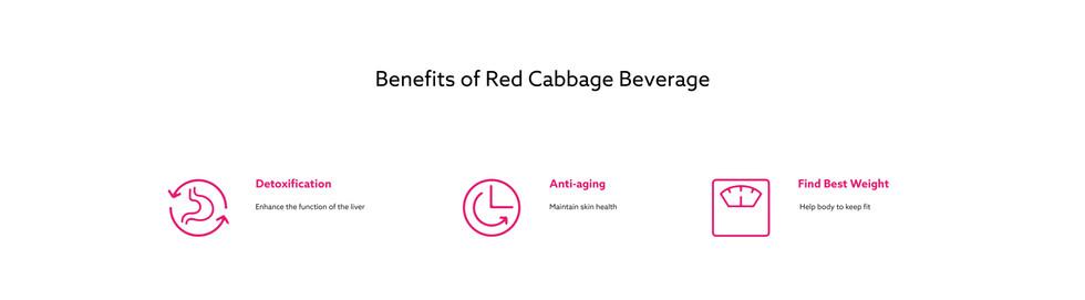Cabbage_web-11.jpg