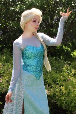 Elsa K2 Once Upon A Princess Party Toron
