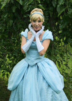 cinderella new 4 once upon a princess party