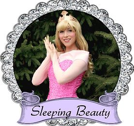 banner sleeping beauty once upon a princ