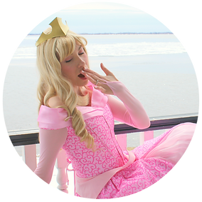sleeping beauty once upon a princess party GTA