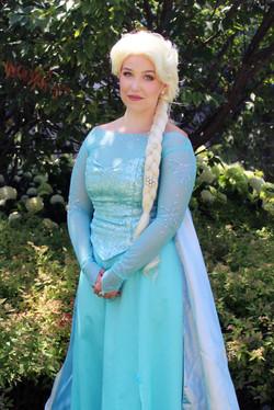 elsa c 2 once upon a princess party toronto