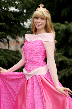 new aurora once upon a princess party