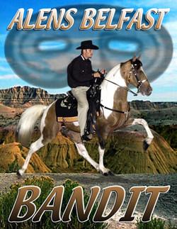Bandit4 (1)