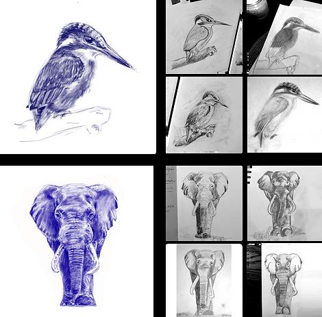 website sketching.png