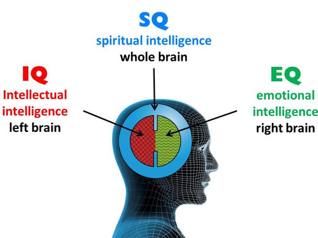 IQ * EQ * SQ = €Q