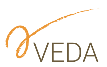 Het VEDA-model