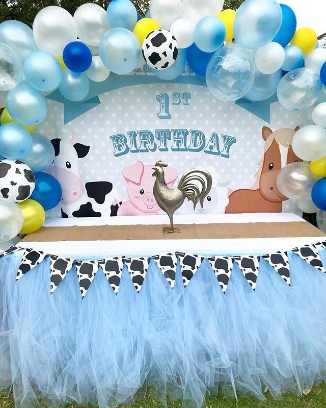 Little Farmyard 1st Birthday Fun__Concep