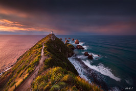 Nugget Point 日出
