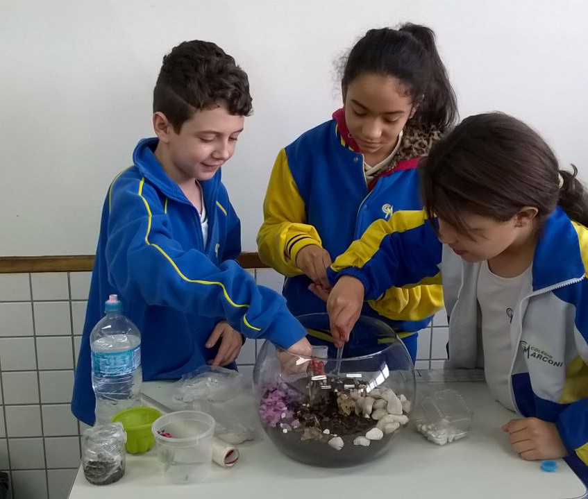colegio-marconi-minhocario-3