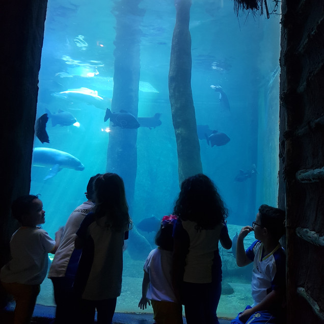 Visita ao Aquário de São Paulo