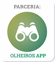 OLHEIROS APP.png