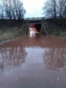 floodnew.jpg