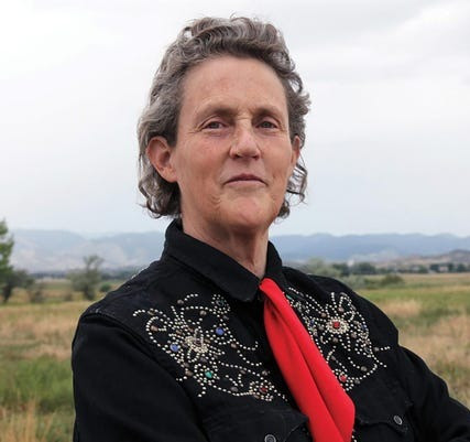 Mary Temple Grandin is a consultant to the livestock industry on animal behavior, and an autism spokesperson. She is one of the first individuals on the autism spectrum to document the insights she gained from her personal experience of autism.