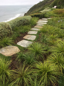 Beach front Pathway