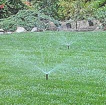 Irrigation in Lawn