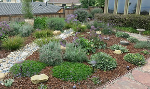 Decorative Low maintenance Landscape