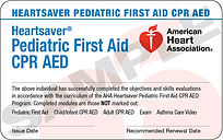 CPR/FirstAid