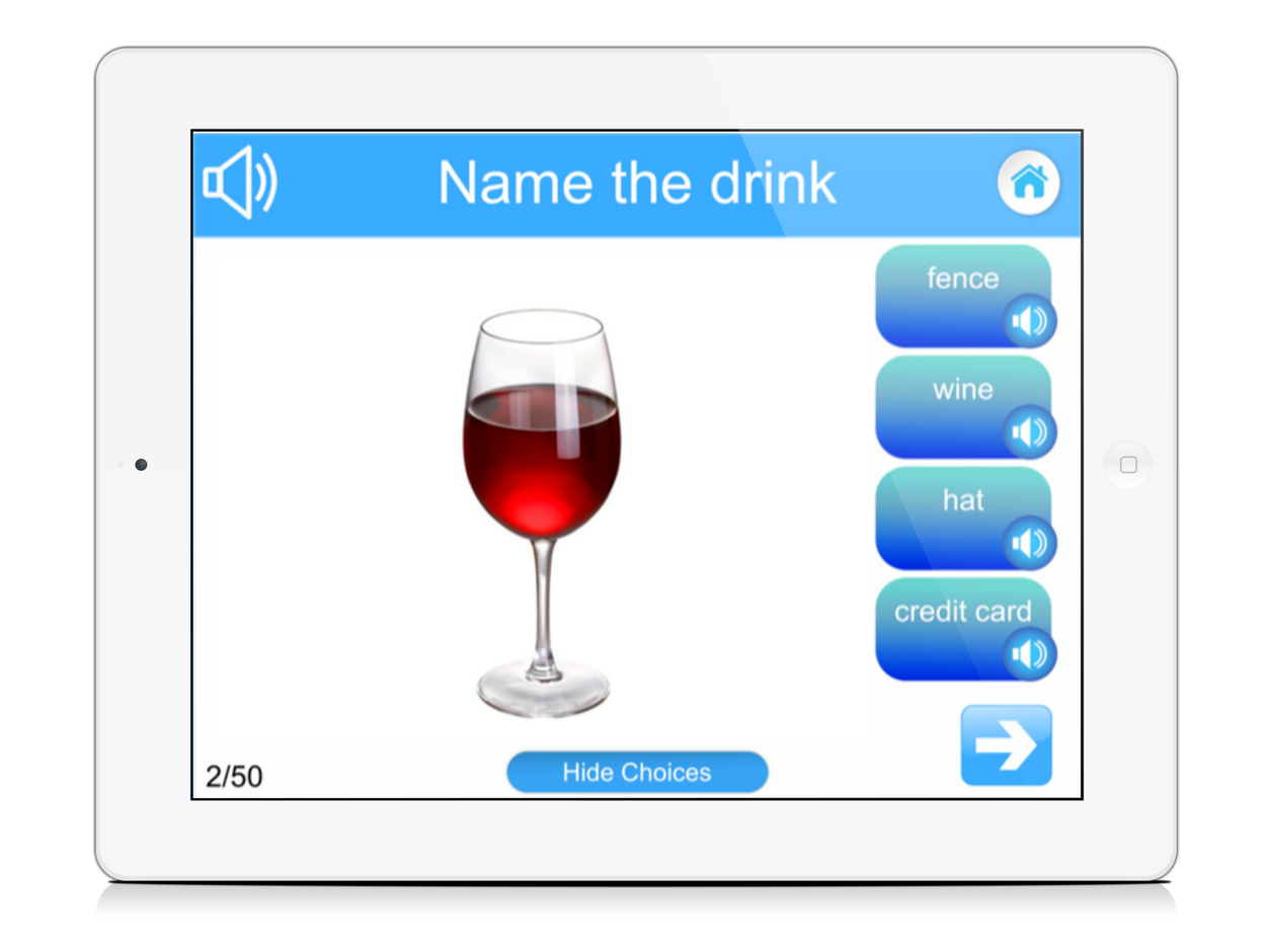 Aphasia Speech Therapy: Custom Naming Test