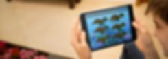 Turtle Talk app.png