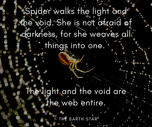 Spider walks the light and the void. She is not afraid of darkness, for she weaves all thi