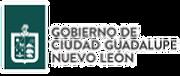 Nuevo Leon.png