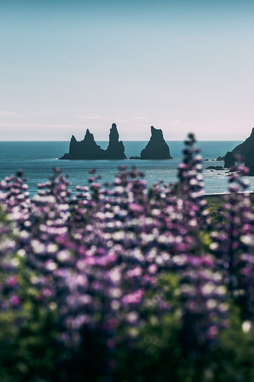 Rochers Vik Islande