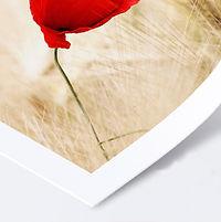 papier_brillant_OK.jpg