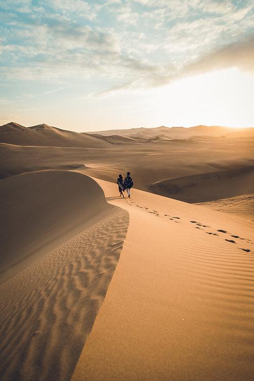 Walk Desert Huacachina Perou