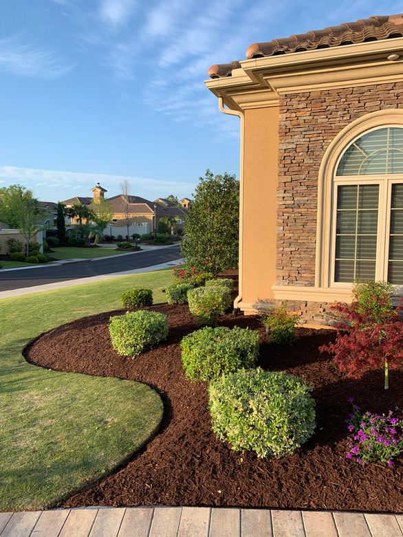Grand Dunes new lawn and mulch installation