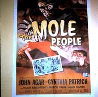 Poster In My Bedroom (1964).jpg