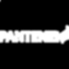 pantene-logo-png-2 copy.png