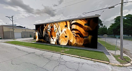 FINAL Proud Olneans in Tiger Country.jpg