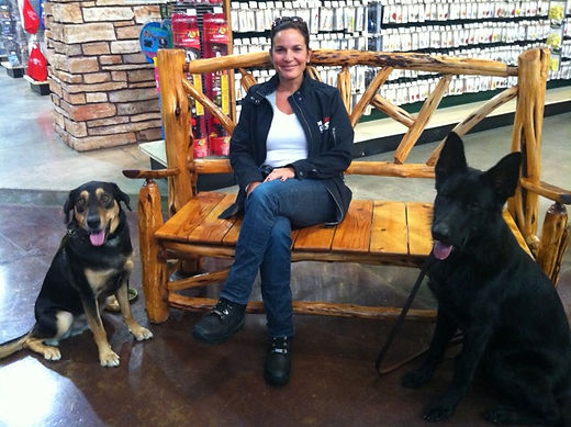 Smart Dog obedience training programs in Southeastern Michigan.