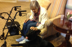 Closeness of a therapy dog