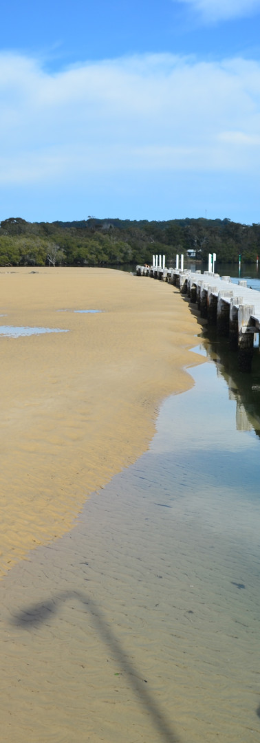 Existing pier at low tide