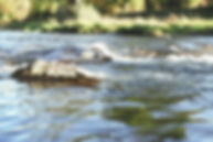 sichtbarsein coaching, Persönlichkeitsentwicklung, im Fluss, fliessen