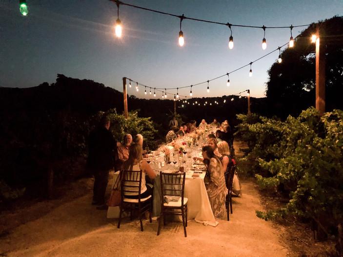 Dinner between the Vines
