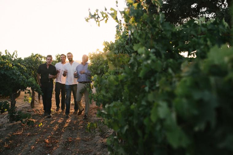 A Stroll Through the Vineyard