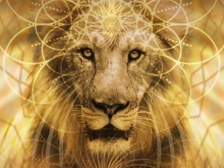 Løvens port   Lion's gate