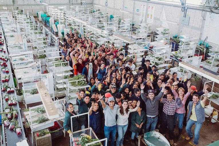 Primarossa Farm Team