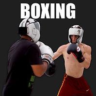 Onyx Boxing