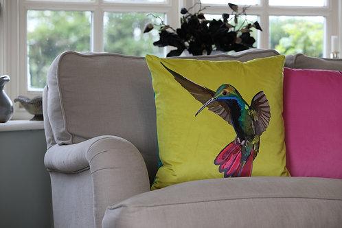 Hummingbird Velvet Cushion
