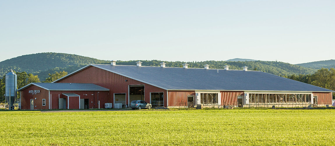 The milking barn