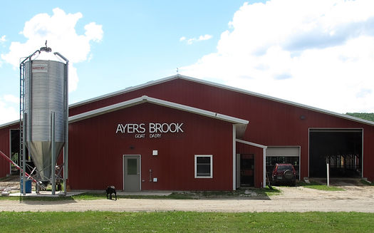Ayers Brook Goat Dairy milking barn