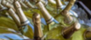 negrer 2.jpg