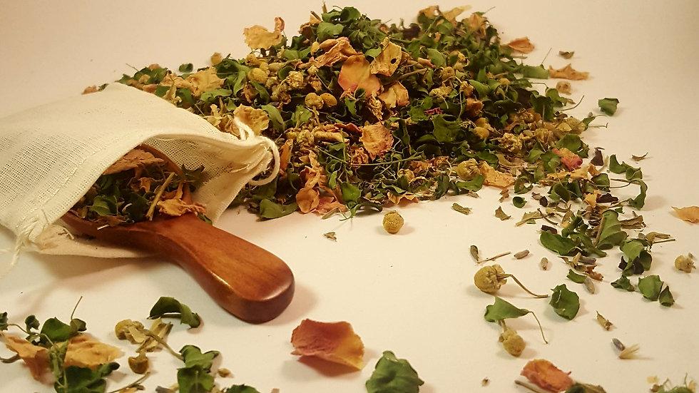 Organic Tea Sampler - Moringa