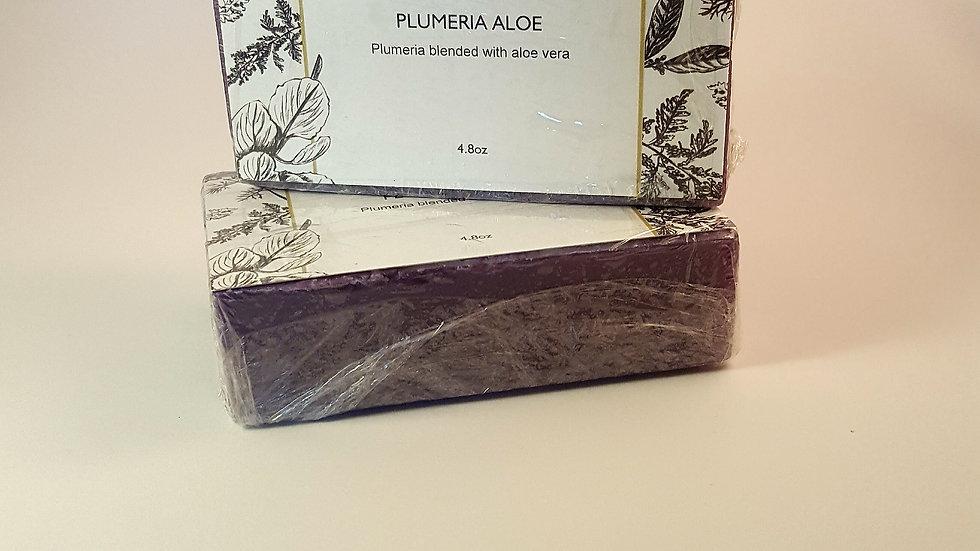 Plumeria Aloe